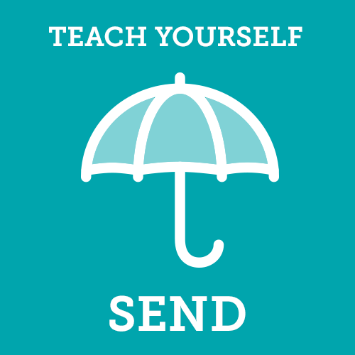 Teach Yourself SEND